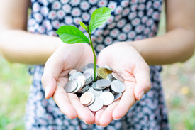 A leaf grows upwards from a handful of coins - how do banks grow your money?