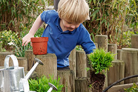 Blonde-haired boy with blue shirt, watering plants in a garden