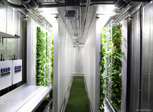 Hydroponic greenhouse built in a reused shipping container