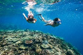 Couple snorkeling across a coral reef in Fiji